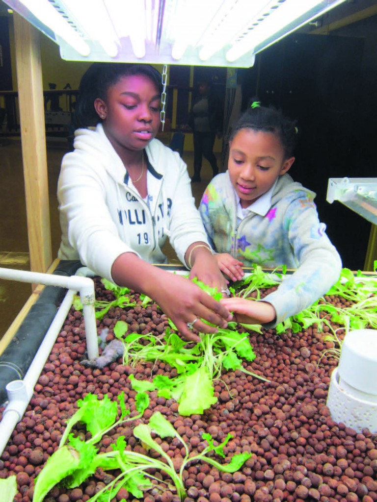 Michaela Atkins, left, and Brilynne Smith describe the aquaponics project they help with at the Solomon Girls Center youth garden program. The system features a tank full of fish. The water the fish swim in is pumped into a bed of soil pellets and lettuce seeds, where the nutrient-rich water helps spur rapid growth. Photo by Mike Brownlee