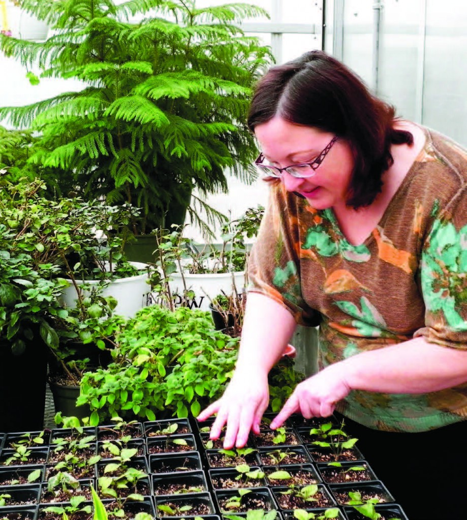 A gardener from a very early age, Barbara Stuckey tends to her seedlings in the greenhouse at Iowa Western Community College as she shares her tips for growing radishes. Photo by Theresa Farrage