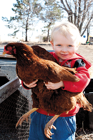 Aiden Powers, William's son, holds one of the family's favorite hens, Henny Penny.
