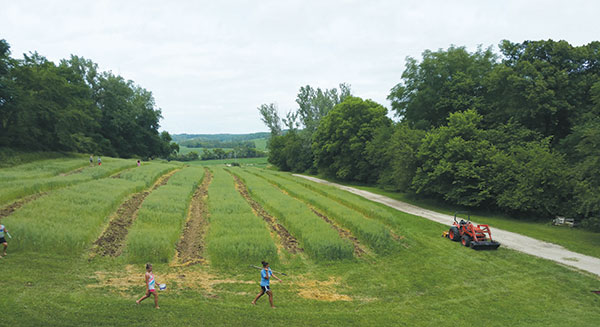 The Trailblazers of the Heartland prepare pumpkin patches between rows of oats at Loess Hills Young People's Farm. The Trailblazers are among the community partners that landowner Joe Driscoll envisions having a stake in the future of sustainable agriculture on his property.