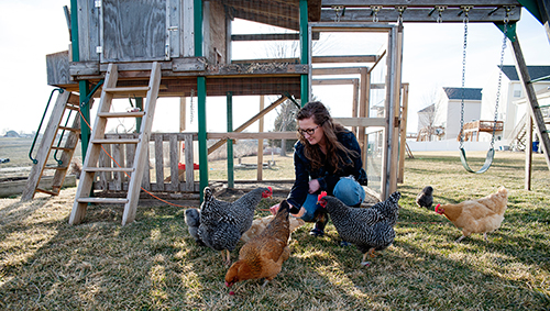 Angie Arms loved the idea of having chickens, of living out in the country and being self-sustaining and each year, would request chickens as a gift for her birthday, Mother's Day and her anniversary. Her persistence finally paid off.