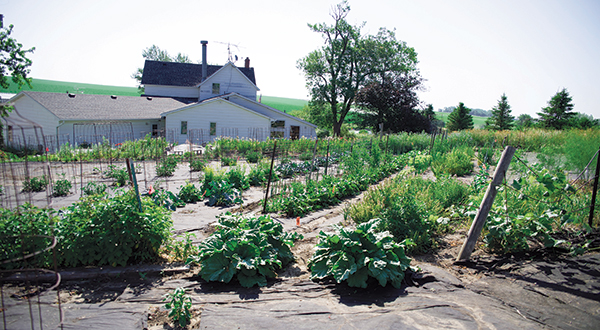 Local village residents Jim and Linda Pruss want Eat to succeed and share the bounty of their garden with the restaurant.