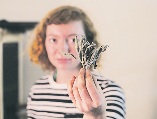 One of Emily's winter duties as a garden intern includes drying herbs picked from the garden. Here she holds sage still drying.