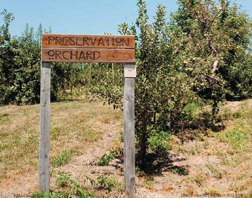 preservation_orchard