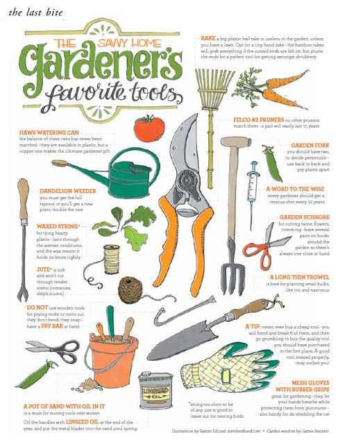 THE LAST BITE: The Savvy Home Gardener's Favorite Tools
